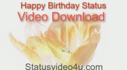above image is showing topic happy birthday status video download
